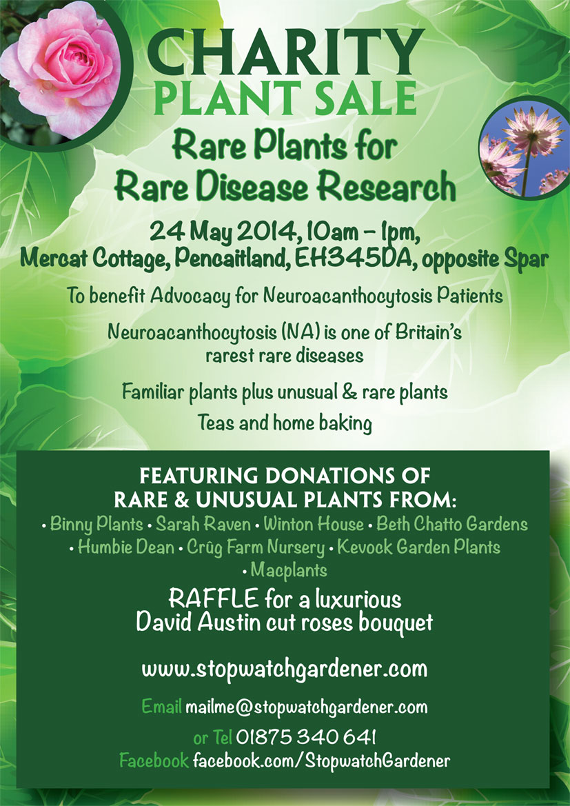smaller-final-CHARITY-PLANT-SALE---MAY2014